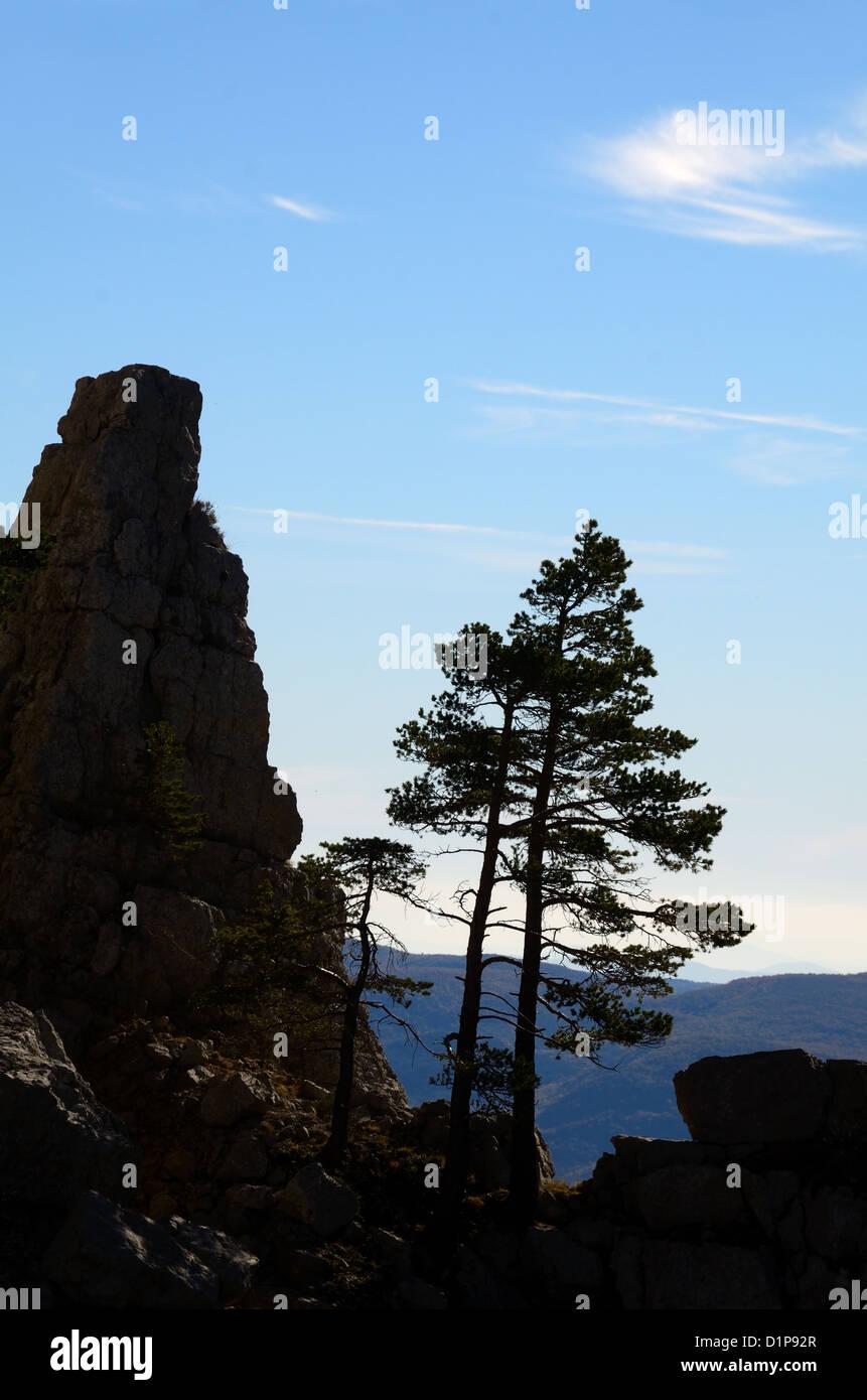 Profilo di Pino e sperone di roccia sul Cadières de Brandis affioramenti di roccia nei pressi di Castellane Immagini Stock