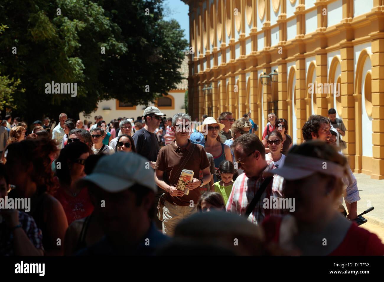 Jerez de la Frontera, Spagna, visitatori dal reale andalusa di equitazione Scuola d'arte Immagini Stock