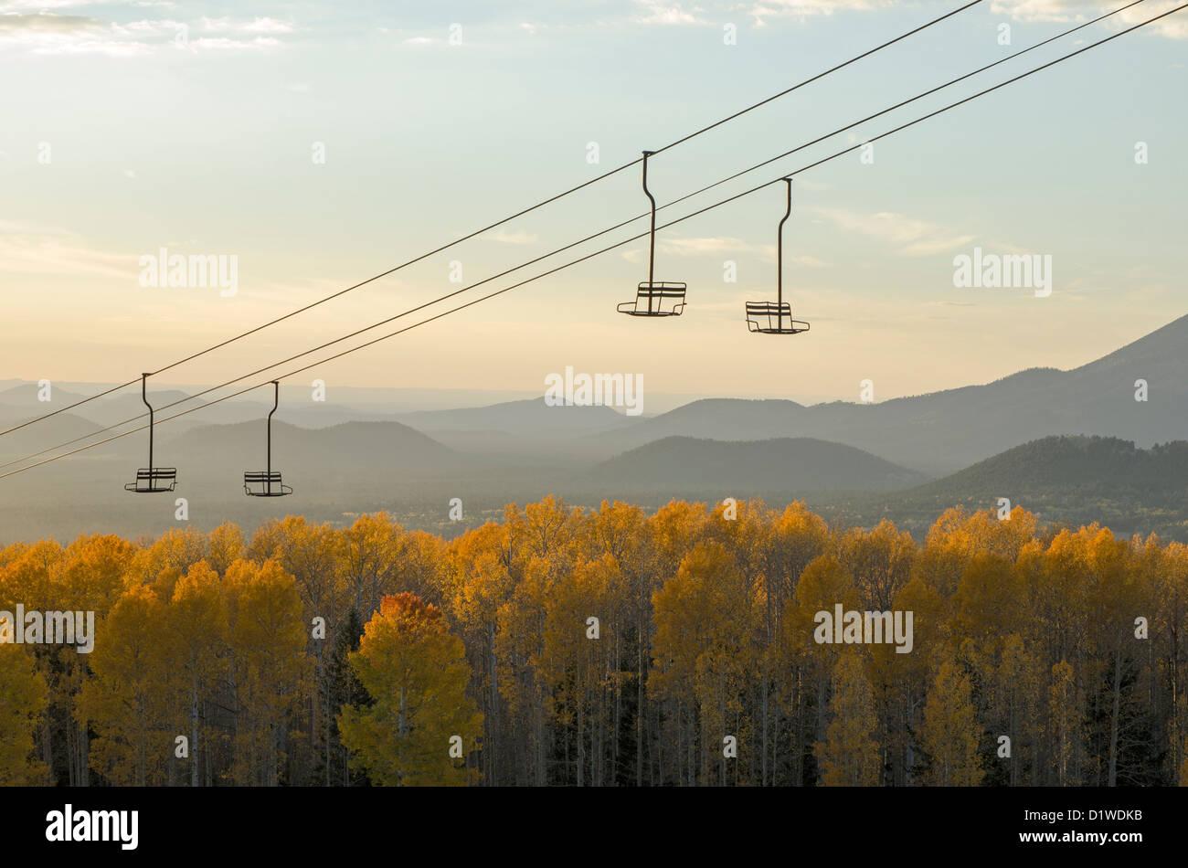 Aspens girare un giallo brillante in autunno presso l'Arizona Snowbowl, vicino a Flagstaff, in Arizona, Stati Immagini Stock