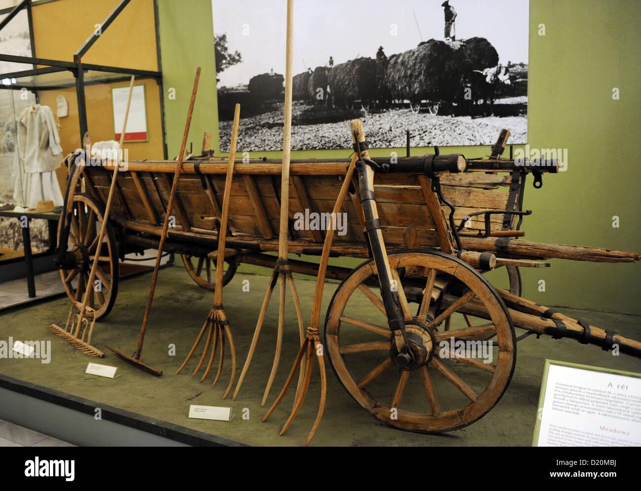 Gli strumenti utilizzati per la raccolta di fieno. Museo etnografico. Budapest. Ungheria. Immagini Stock