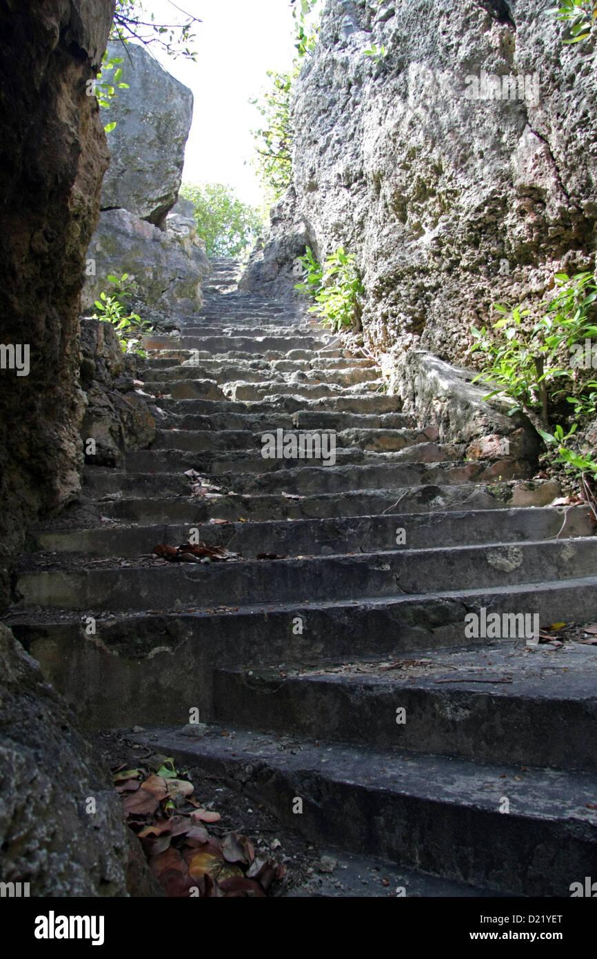 Gradini di pietra fino dal fallo Bay beach, Barbados Immagini Stock