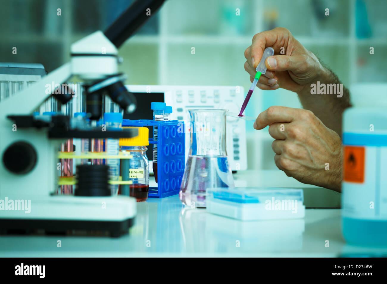 Scienziato fa un campione di fluido su di un vetrino Foto Stock