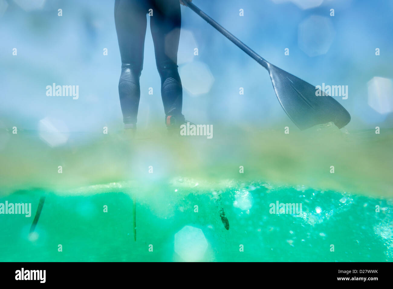 Stand Up Paddle surf. Immagini Stock