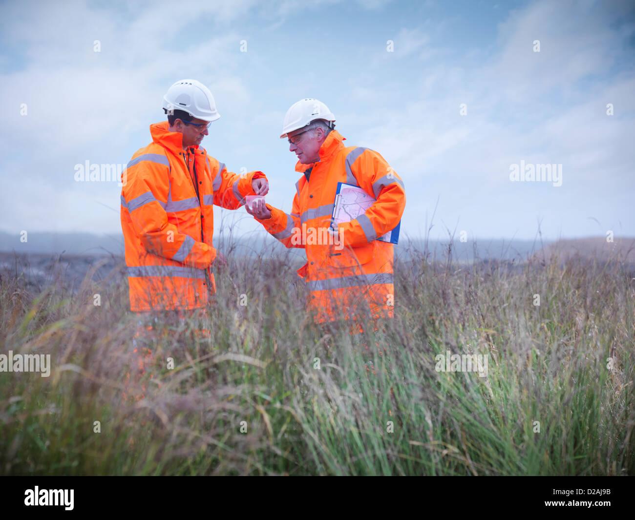 Gli ecologisti esaminando erba alta Immagini Stock