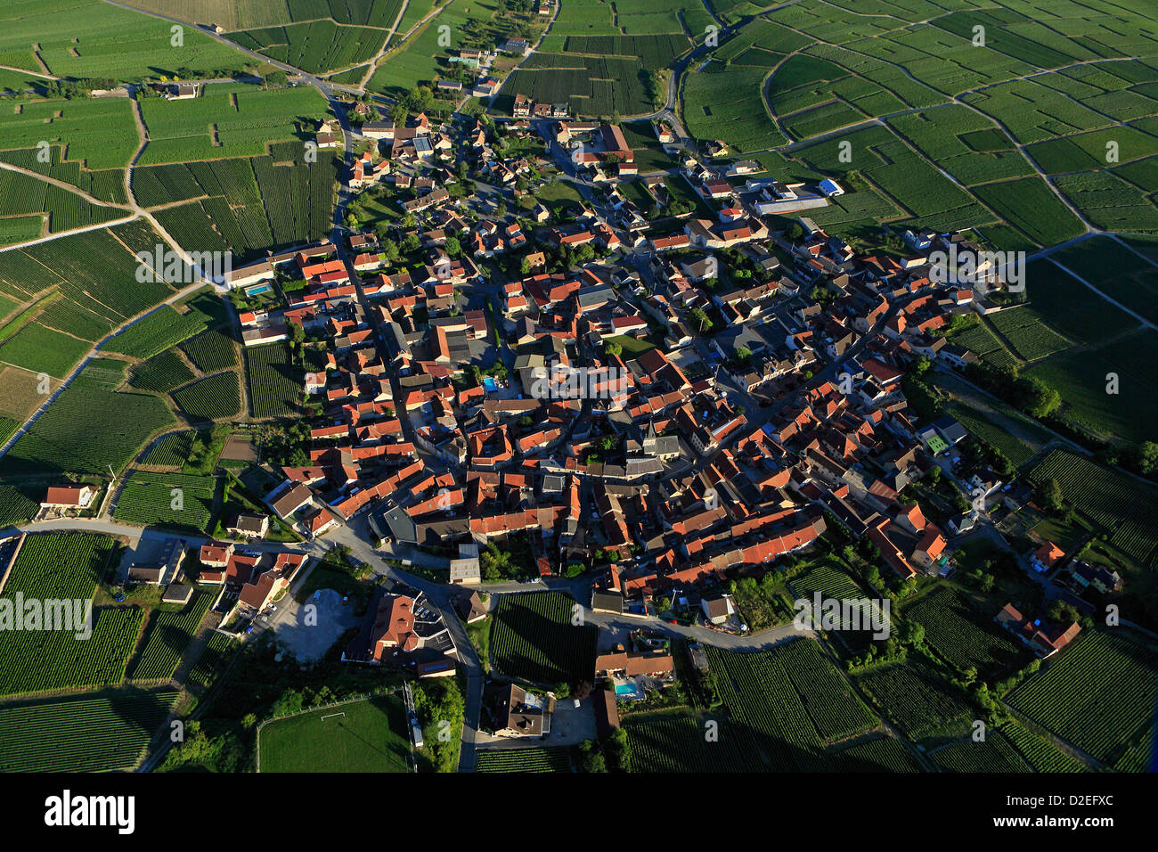 Francia, Marne (51), Trepail villaggio di vigneti champagne, il villaggio si trova ai piedi delle Montagne de Reims, Immagini Stock