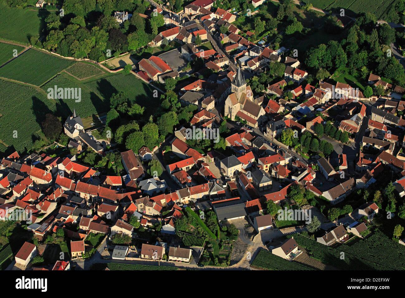 Francia, Marne (51), Ville-Dommange villaggio di vigna di champagne, il villaggio si trova sulle Montagne de Reims Immagini Stock