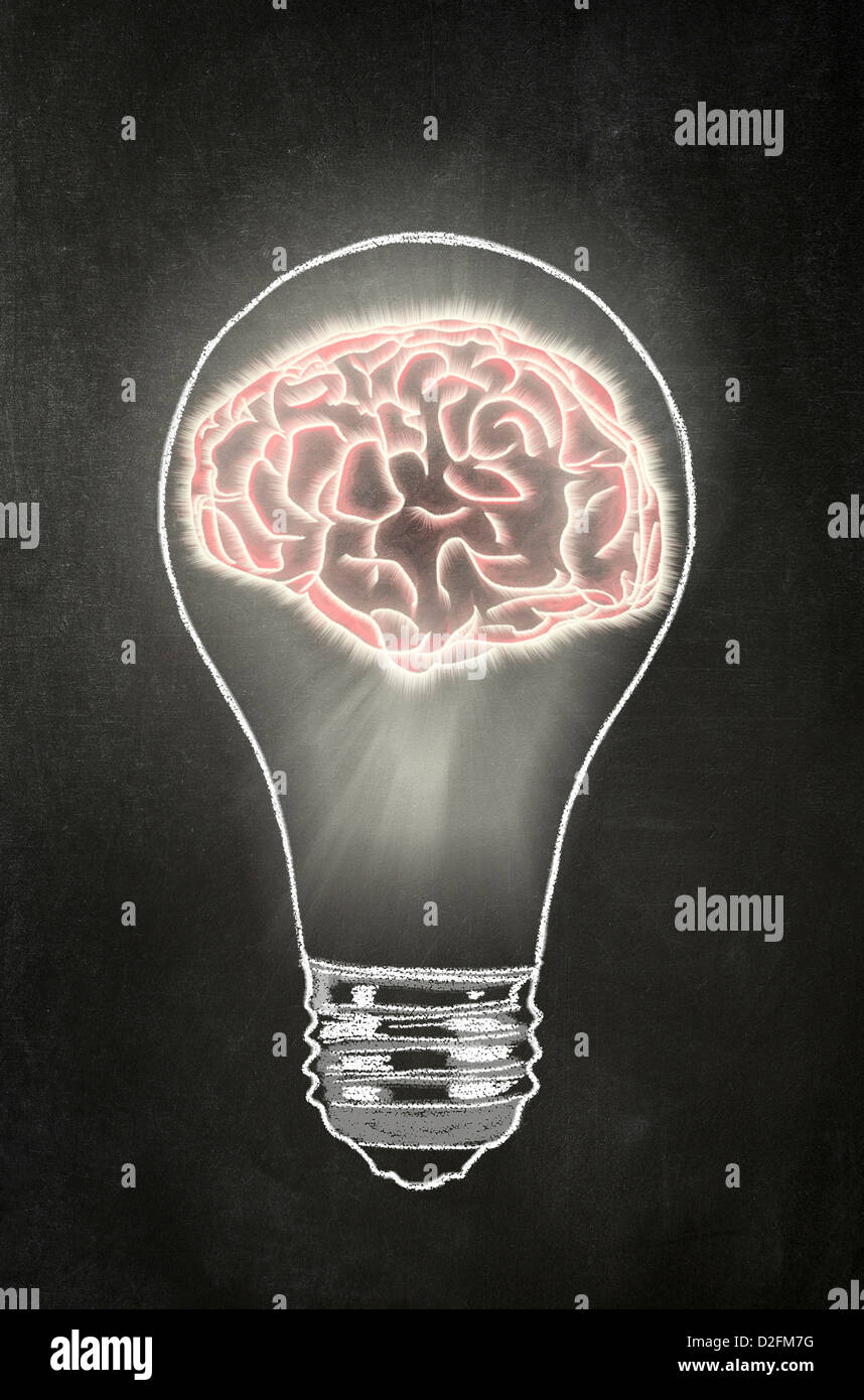 Idea - lampadina con un cervello umano al suo interno su una lavagna Immagini Stock