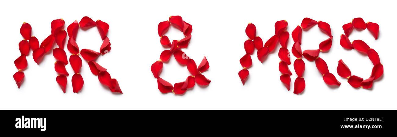 Red petali di rosa ortografia il signor e la signora su sfondo bianco Immagini Stock