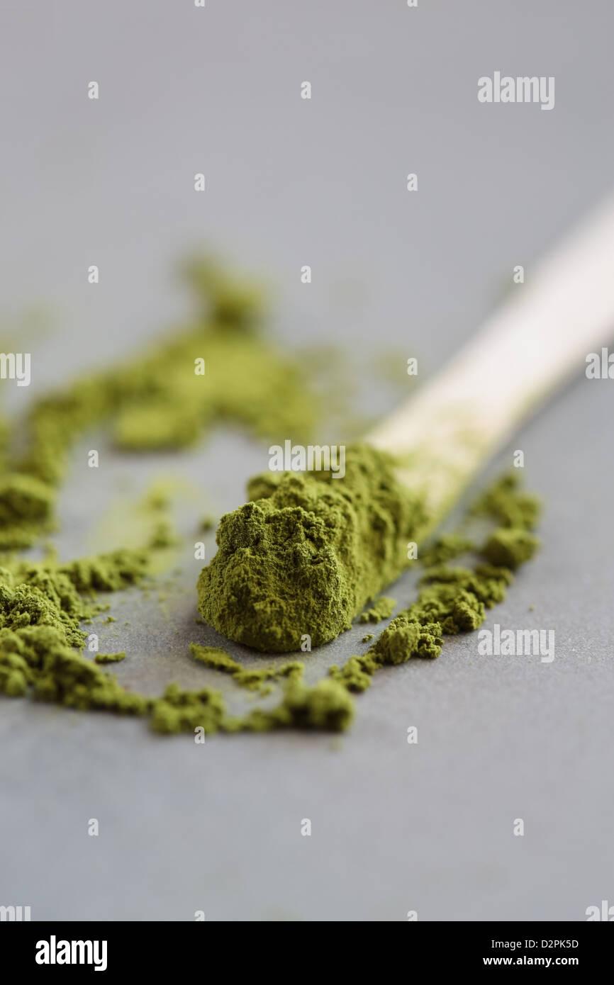 Polvere di tè verde Matcha, il tè Immagini Stock