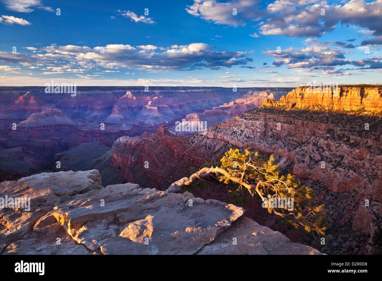 Tubo Creek punto di vista si affacciano, South Rim, il Parco Nazionale del Grand Canyon, Arizona, Stati Uniti d'America Immagini Stock