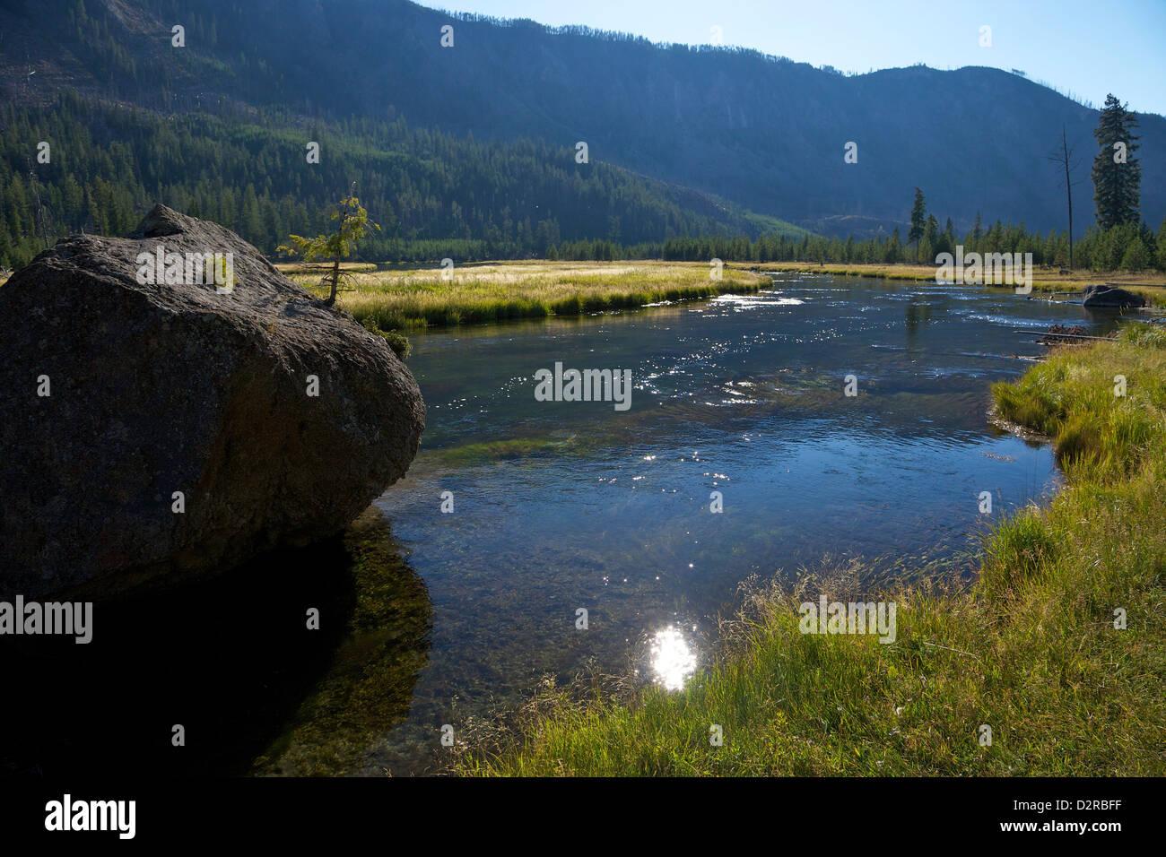 Madison River Valley vicino a Madison, il Parco Nazionale di Yellowstone, Wyoming USA Immagini Stock
