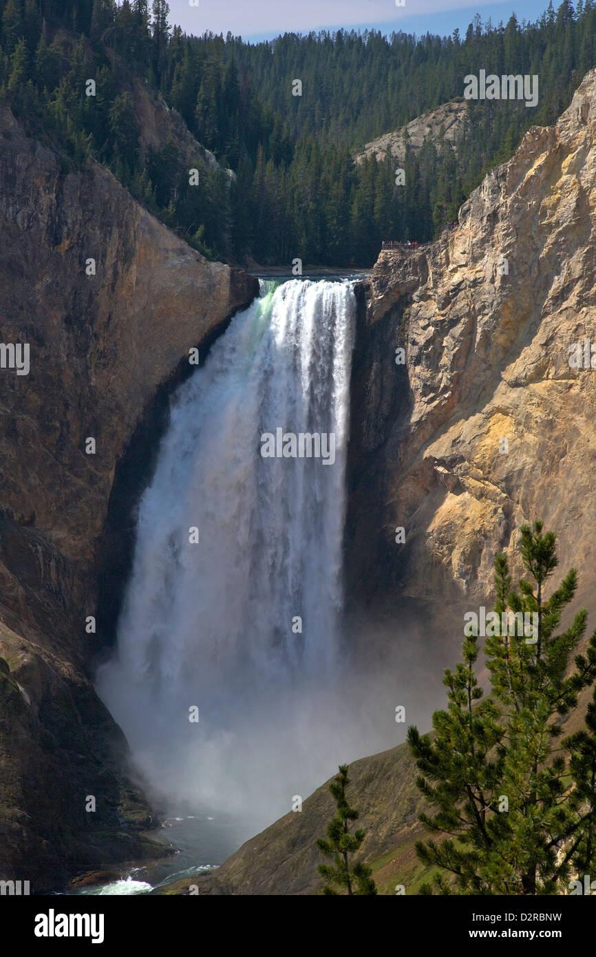 Vista delle Cascate Inferiori da Red Rock Point, il Grand Canyon di Yellowstone River, il Parco Nazionale di Yellowstone, Immagini Stock