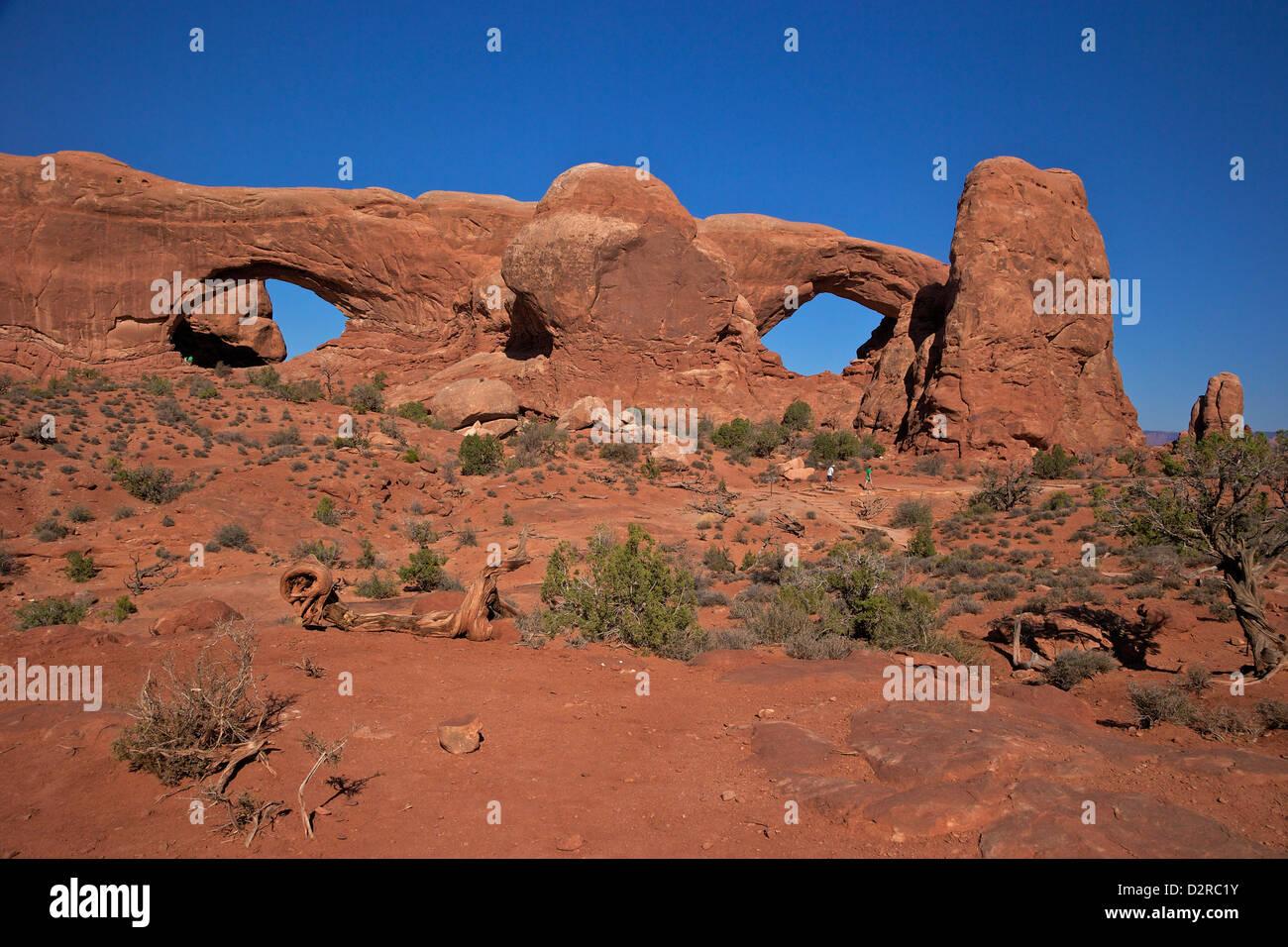 Occhiali (Nord e Sud Windows), il Parco Nazionale di Arches, Moab, Utah, Stati Uniti d'America, America del Immagini Stock