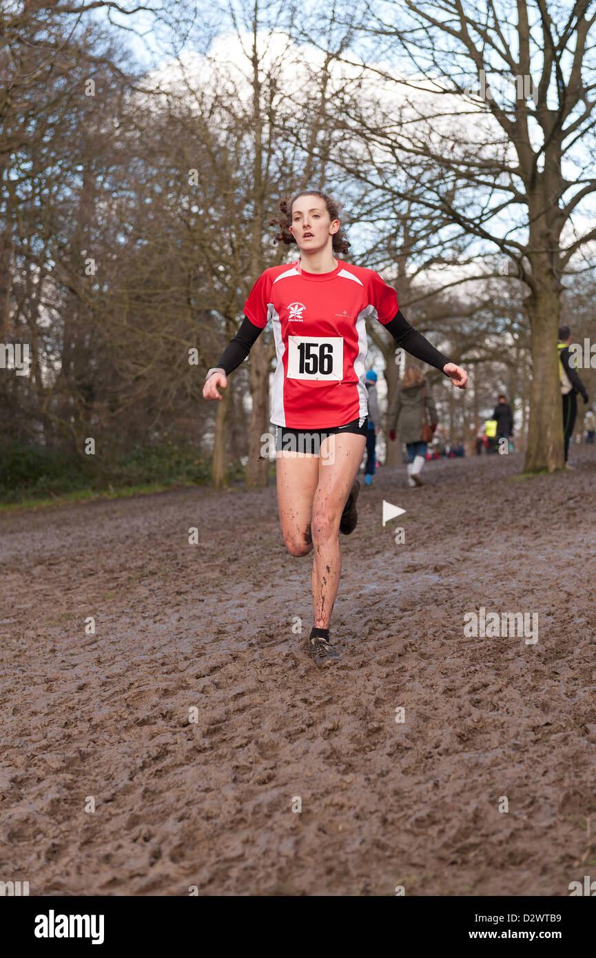 Cross Country Championships senior e tra le giovani ragazze condizioni estremamente fangose su un pendio di estensione Immagini Stock