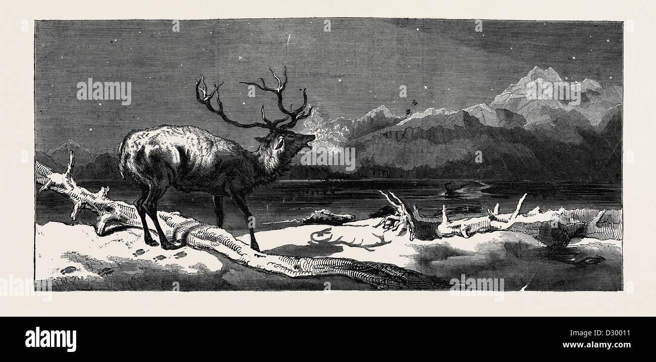Prossimi eventi le loro ombre davanti a loro. Dipinto da E. LANDSEER, R.A. Immagini Stock