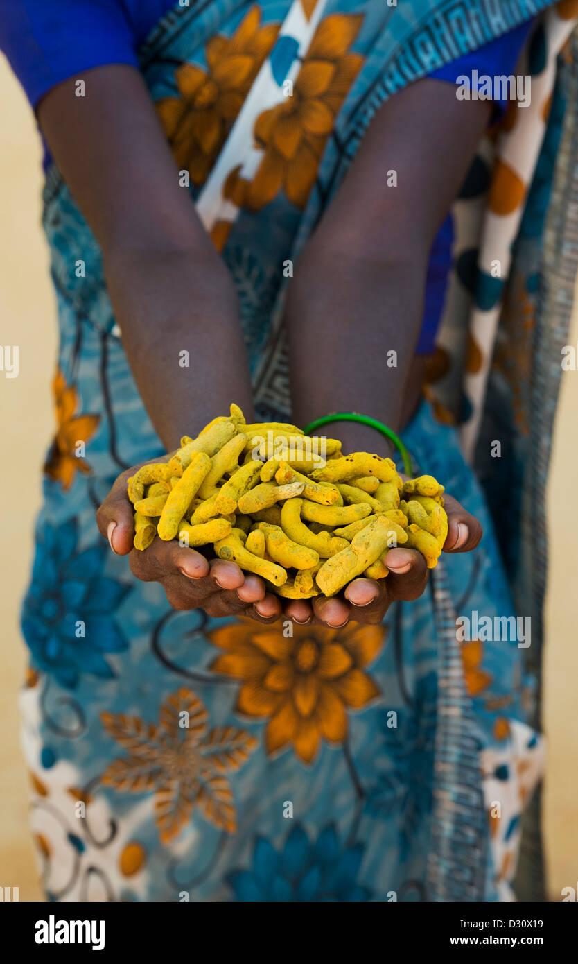 Rurale villaggio indiano donna holding essiccato Curcuma radici / rizomi nelle sue mani. Andhra Pradesh, India Immagini Stock
