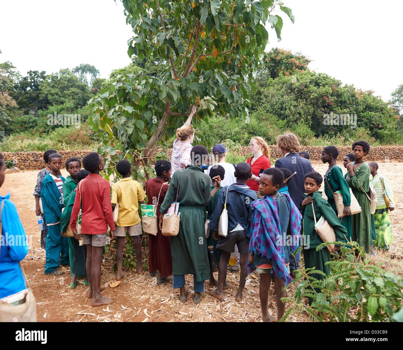 I bambini si radunano attorno a ricercatori che studiano gli insetti in un campo Immagini Stock