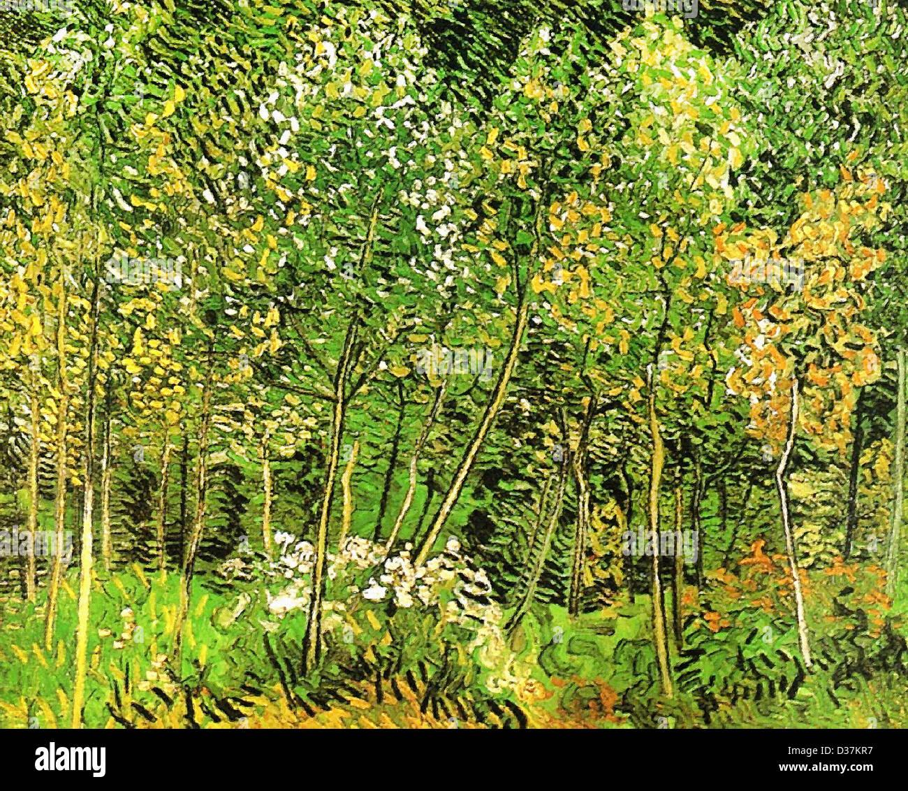 Vincent van Gogh, il Grove.1890. Post-Impressionism. Olio su tela. Immagini Stock
