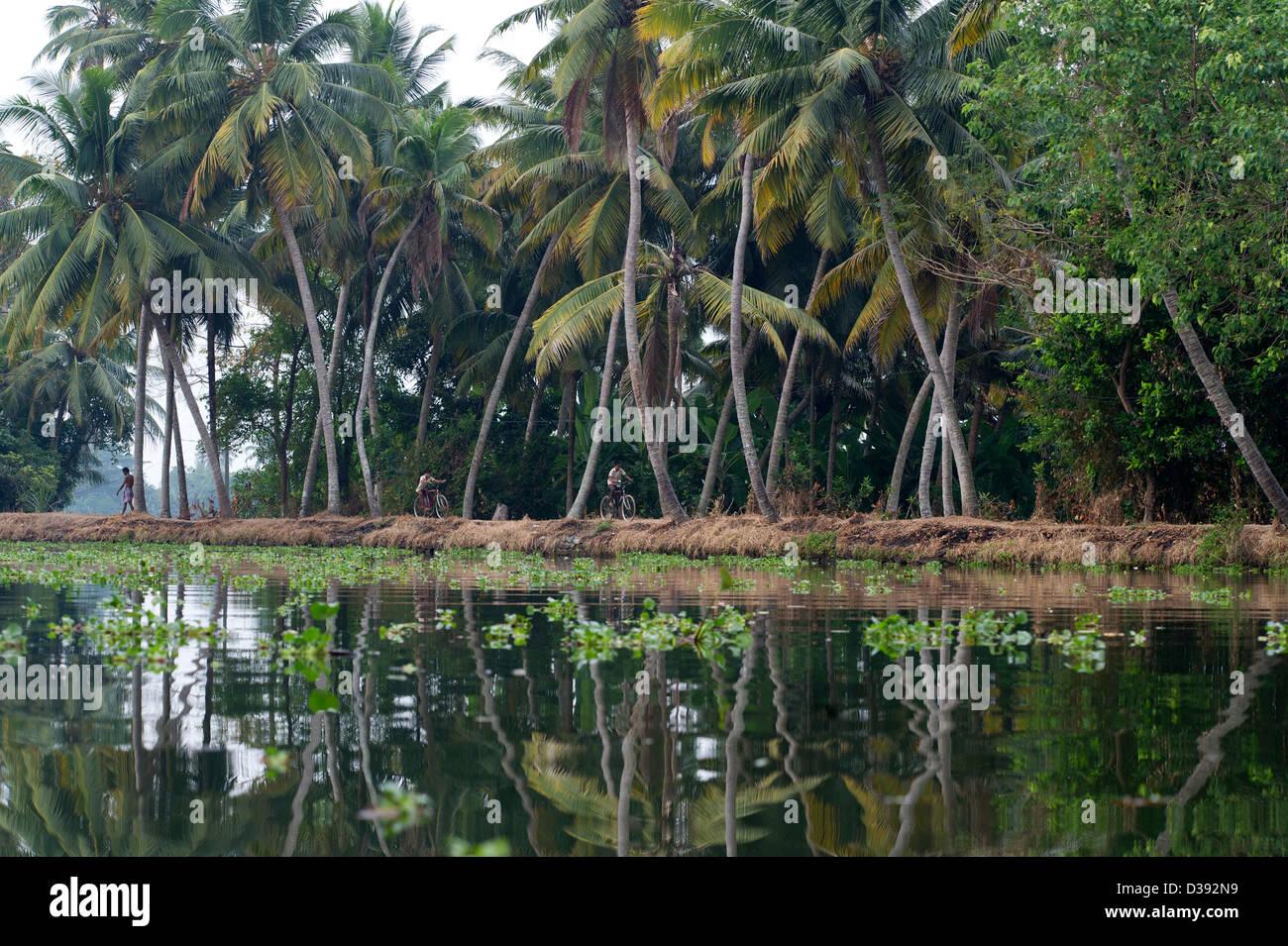 La popolazione locale in bicicletta lungo le rive delle lagune nei pressi di Alleppey (Alappuzha) in Kerala, nell Immagini Stock