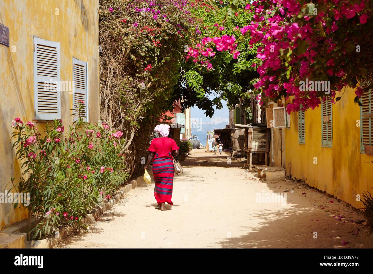 Rue Bouffles, Ile de Goree, Senegal Africa Immagini Stock