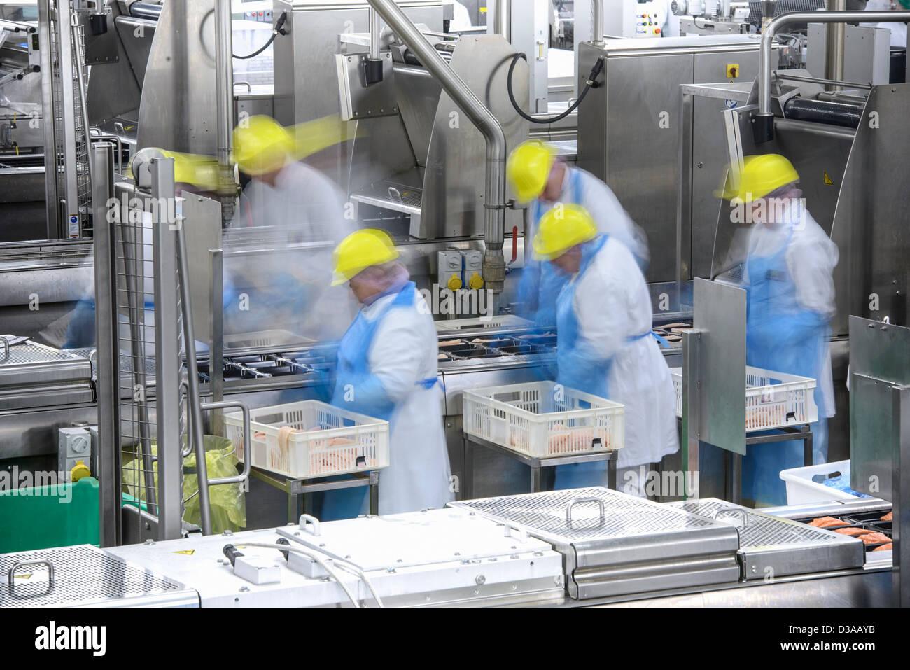Le linee di produzione di cibo di occupato fabbrica, movimento sfocato Foto Stock