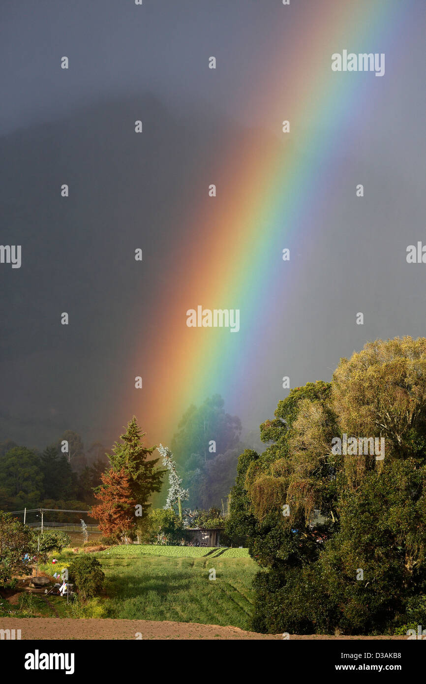 Bright rainbow su terreni agricoli in Volcan Baru regione, Cerro Punta, Chiriqui, Panama Immagini Stock