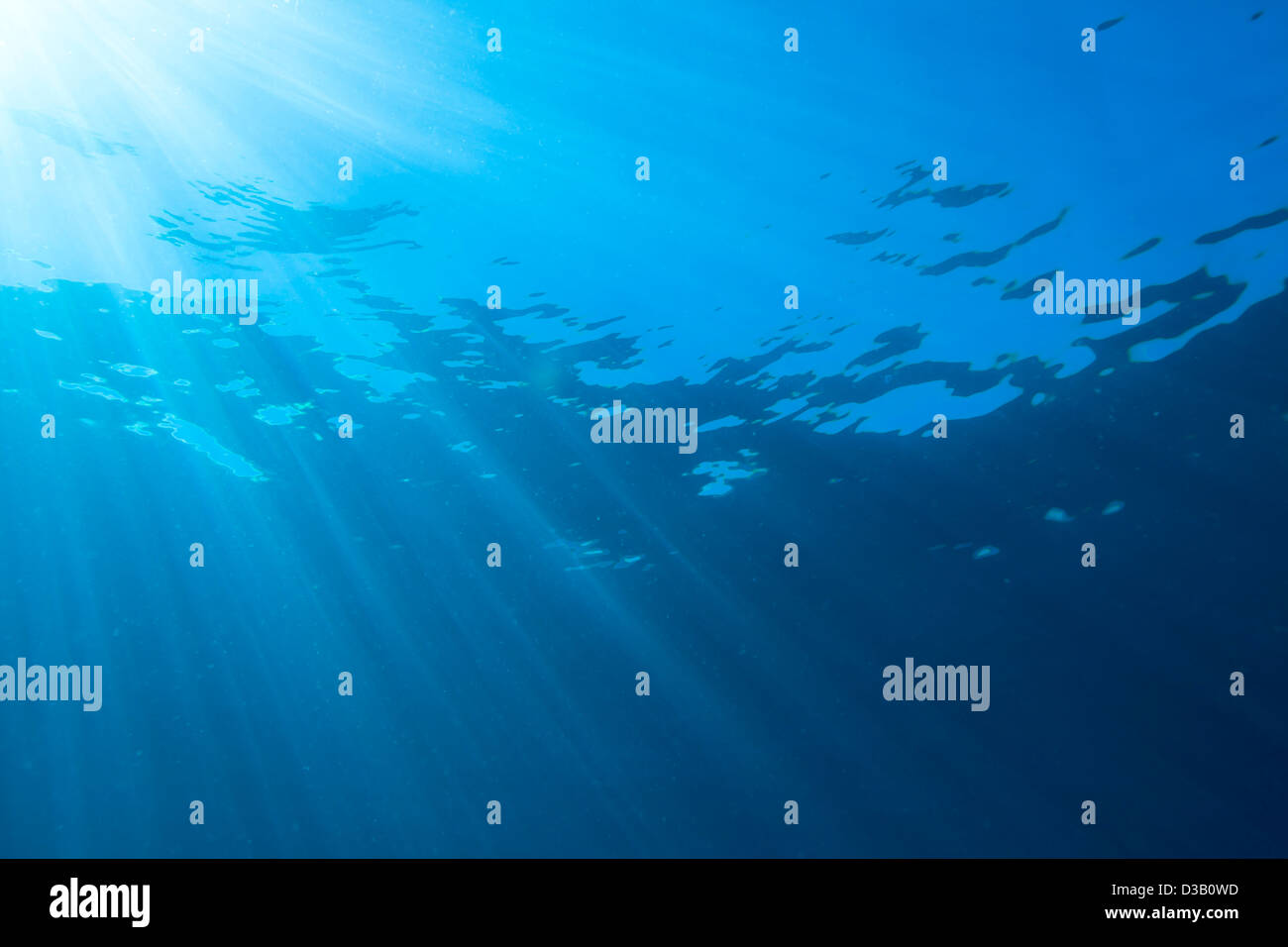 La luce del sole lo streaming attraverso la superficie dell'Oceano Pacifico. Immagini Stock