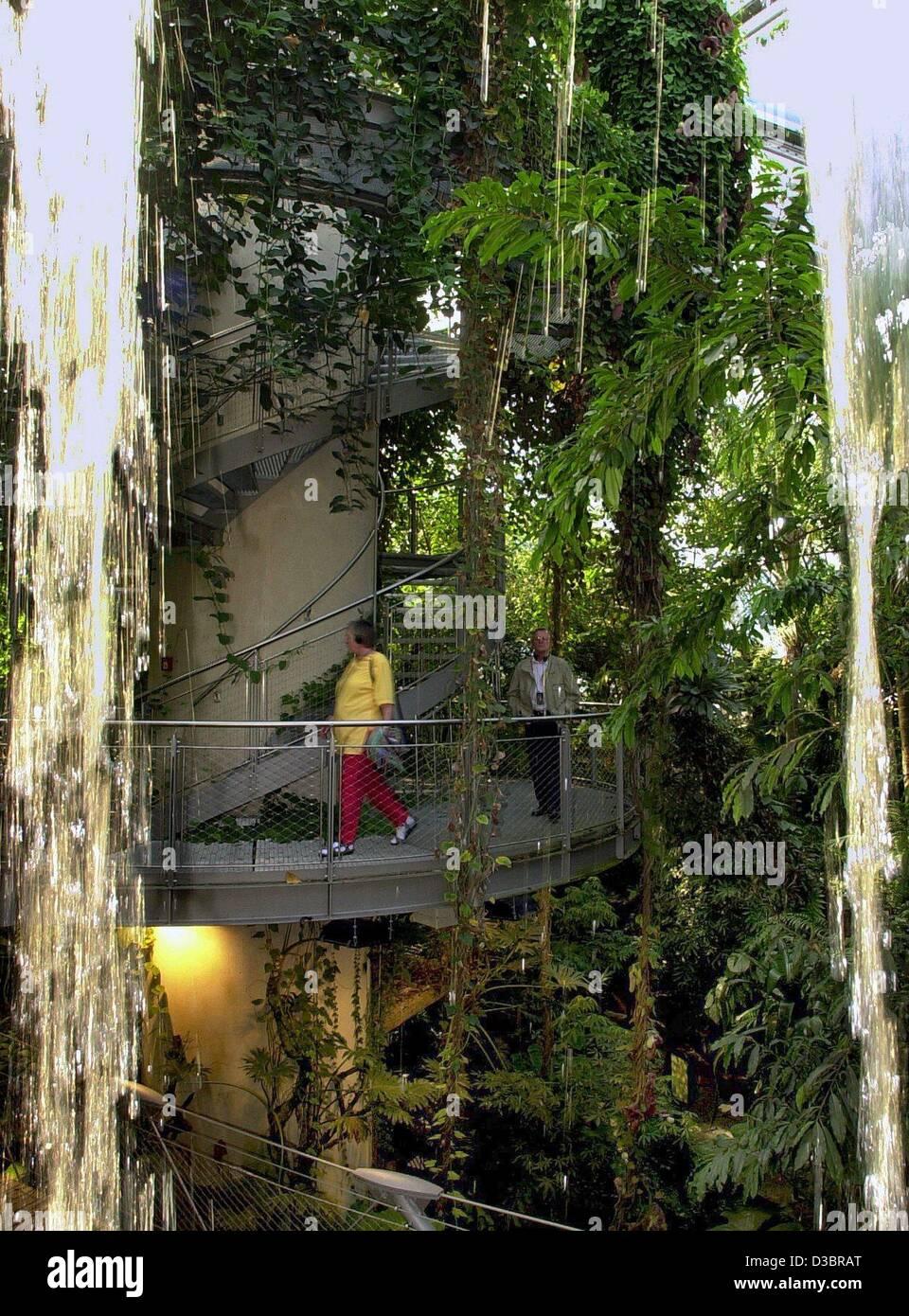(Dpa) - visitatori a piedi passato cascate e alberi ad alto fusto e piante all'interno della foresta pluviale Immagini Stock