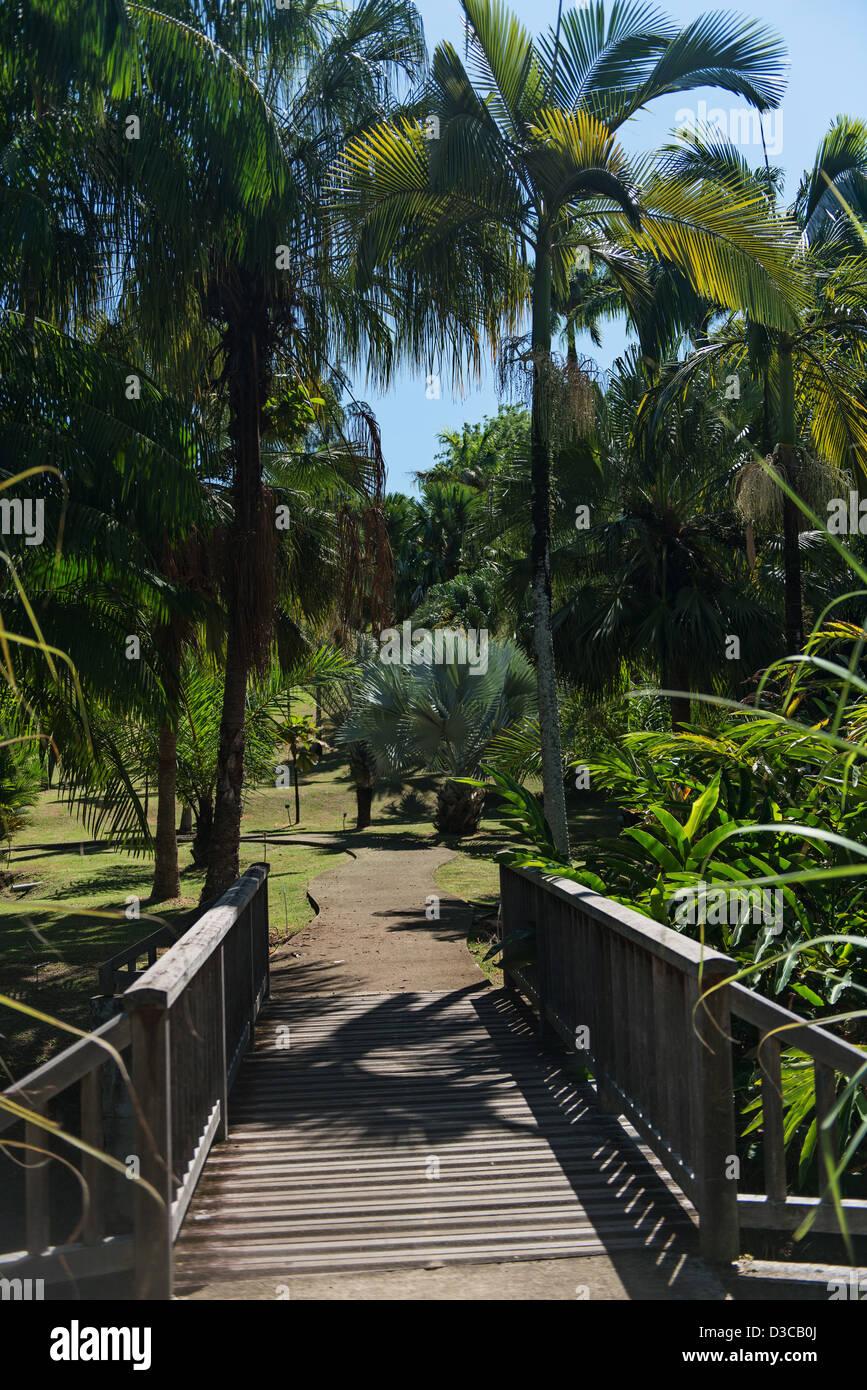 Abitazione Clemente, Le Francois, Martinica Isola, Piccole Antille, il Mare dei Caraibi, Francia Immagini Stock