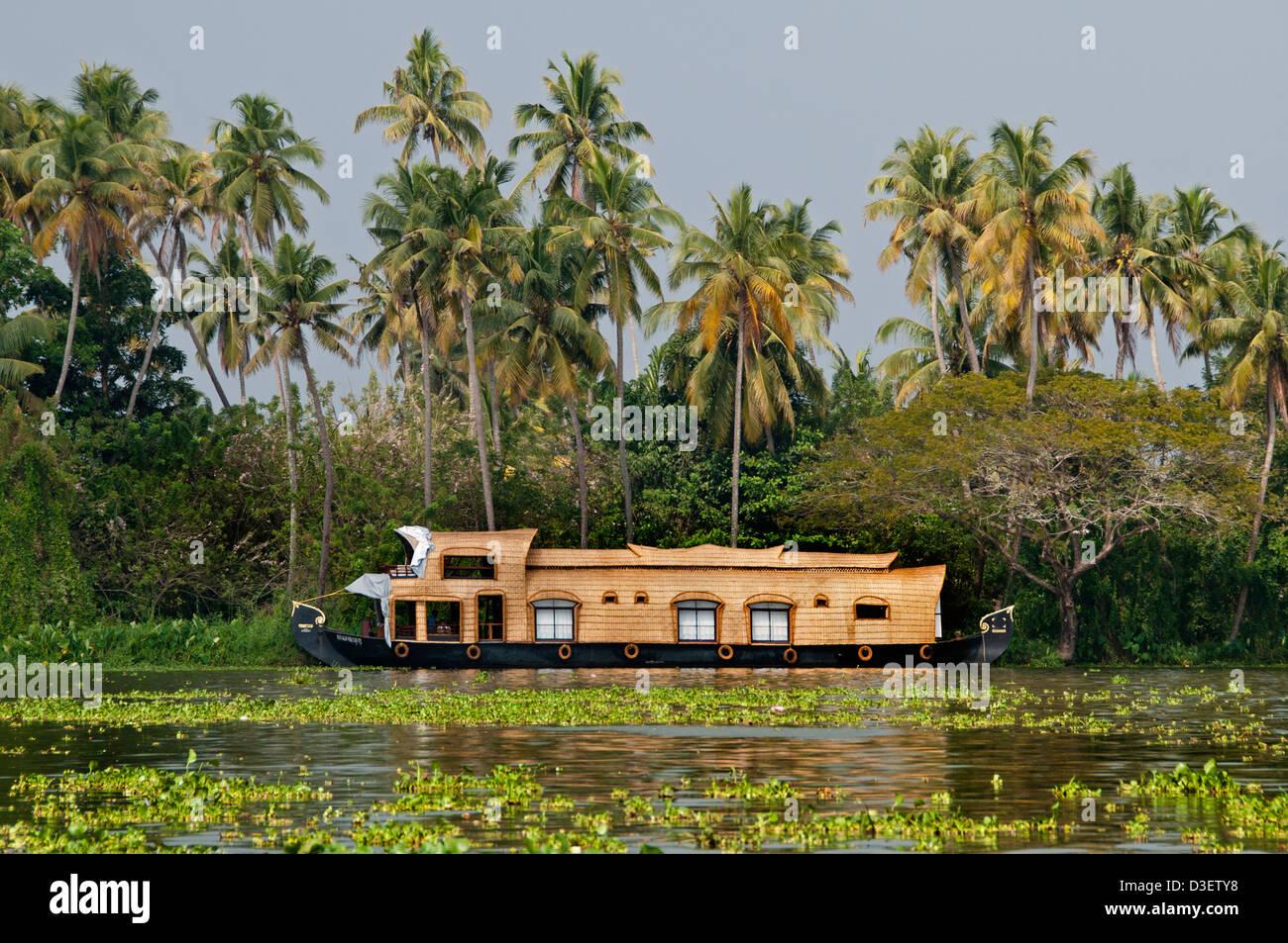 Houseboats Backwaters vicino a Alappuzha (Alleppey), Kerala India Immagini Stock