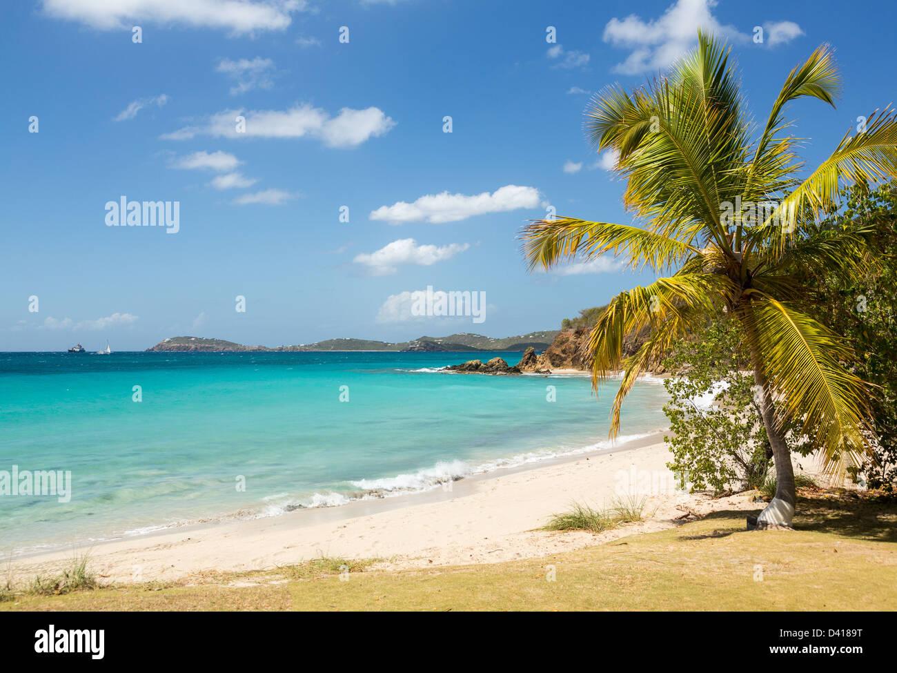 Spiaggia di scena sul isola di San Tommaso in Isole Vergini Americane USVI con Palm tree Immagini Stock