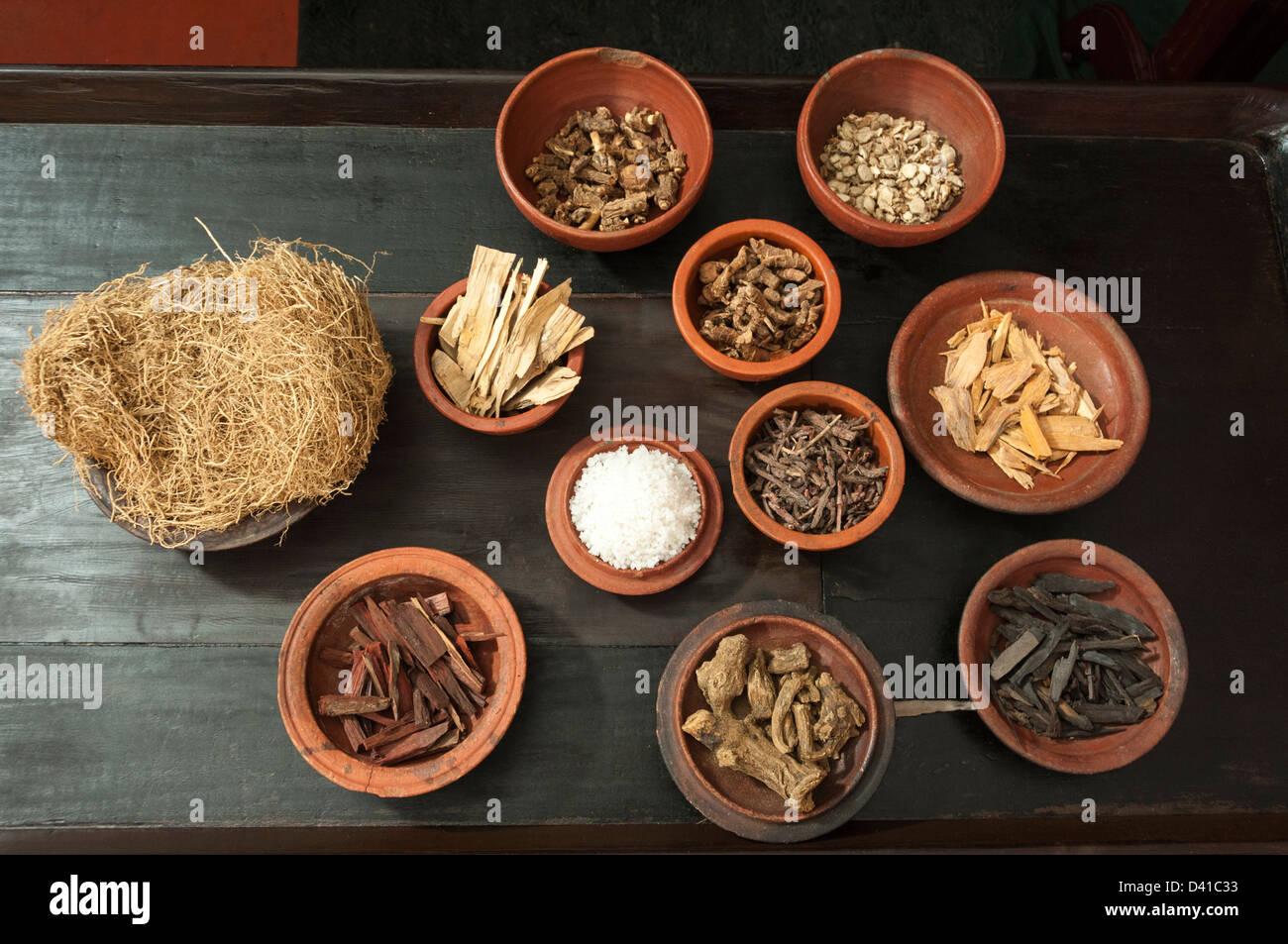 Spezie ayurvedica in vasi di fango, India Immagini Stock