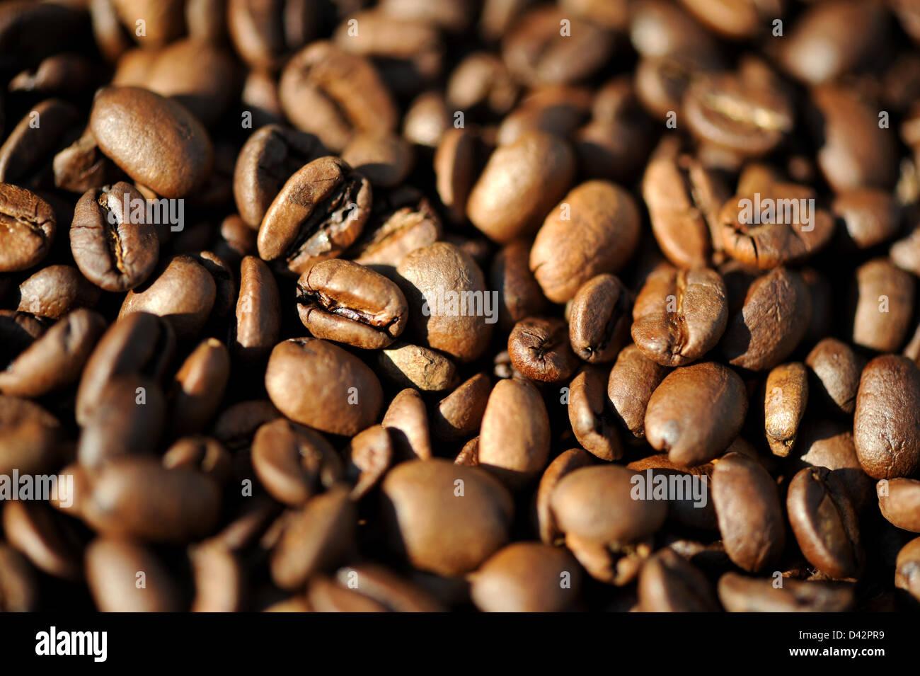 Berlino, Germania, se il caffè torrefatto in grani Foto Stock