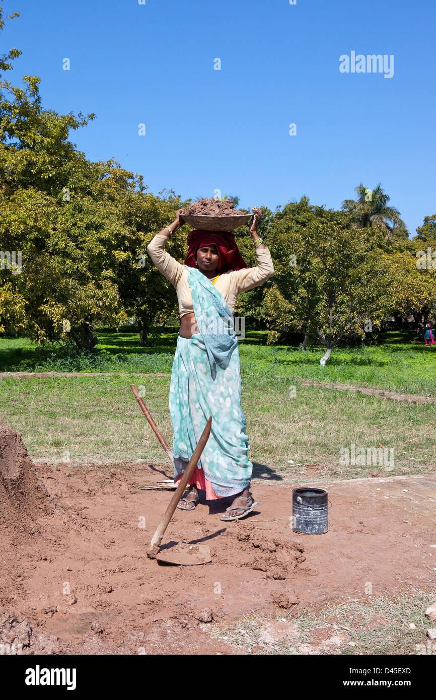Tradizionalmente un vestito donna Indiana che trasportano il cemento a Giardini Pinjore nello stato indiano di Haryana. Immagini Stock