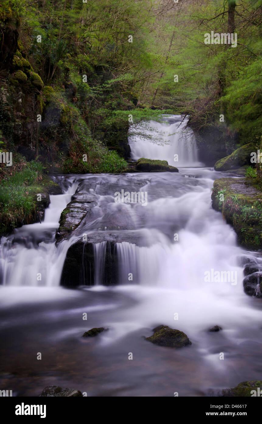 Una cascata che scorre tranquillamente in discesa alberi confinante con il fiume Immagini Stock