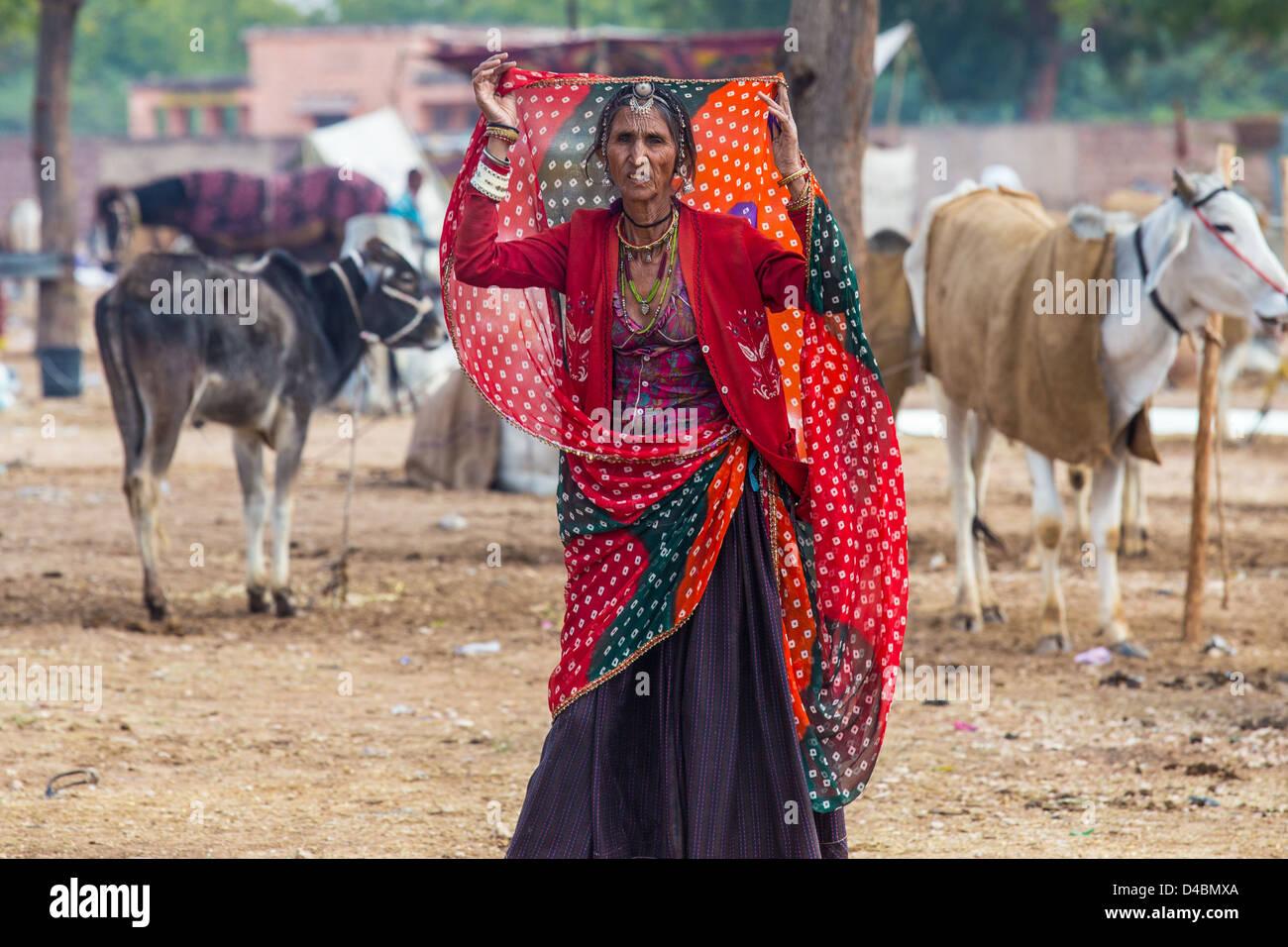 Rajput donna, Nagaur fiera del bestiame, Nagaur, Rajasthan, India Immagini Stock