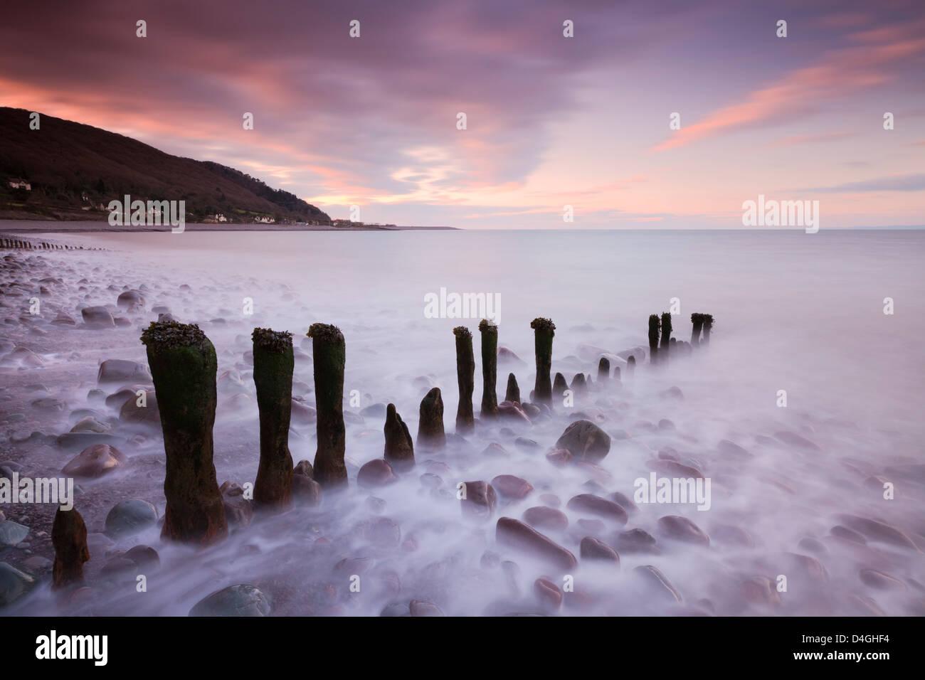 Legno stagionato groyne Porlock sulla Spiaggia, Parco Nazionale di Exmoor, Somerset, Inghilterra. Inverno (febbraio Immagini Stock