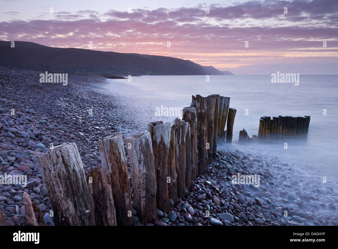 Groyne in legno sulla spiaggia Bossington, Exmoor, Somerset. Inverno (Marzo) 2012. Immagini Stock