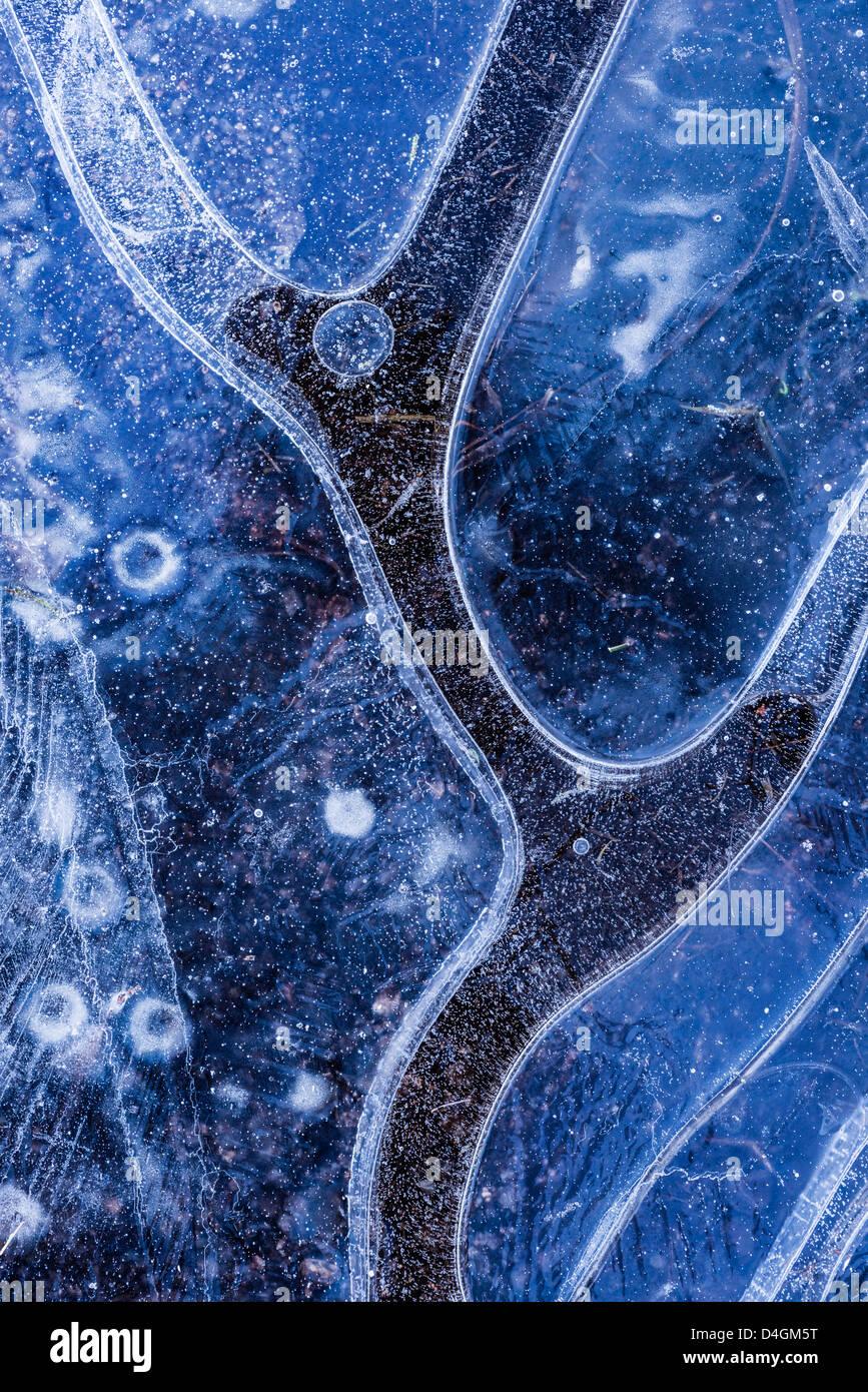 Modello di ghiaccio nel laghetto congelato, Dartmoor Devon, Inghilterra. Inverno (dicembre 2012). Immagini Stock
