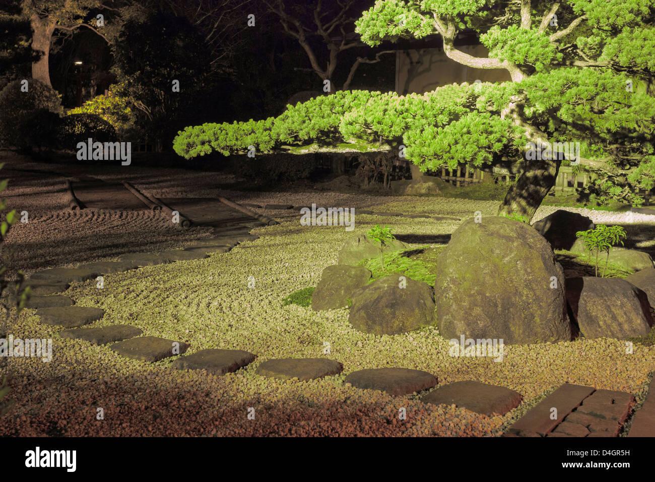 Pino interno giapponese giardino zen con pietra intorno e scenic