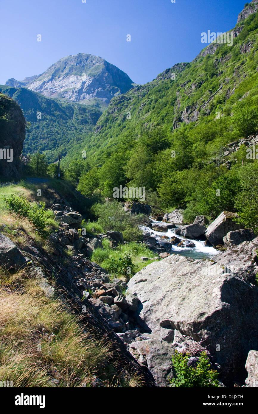 Ruscello di montagna, ha dato de Héas, Pirenei, Francia Immagini Stock