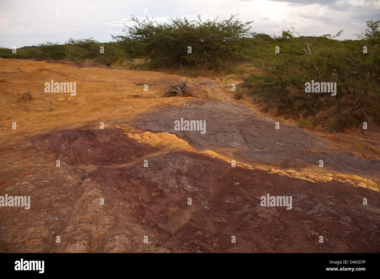 Paesaggio in Sarigua national park, Herrera provincia, Repubblica di Panama. Immagini Stock
