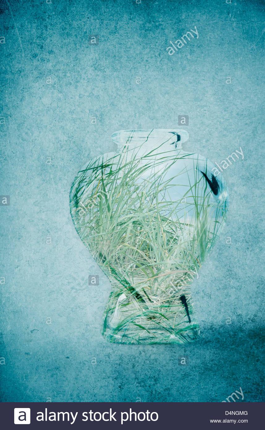 Spiaggia erbe in una bottiglia di vetro su sfondo a trama Immagini Stock