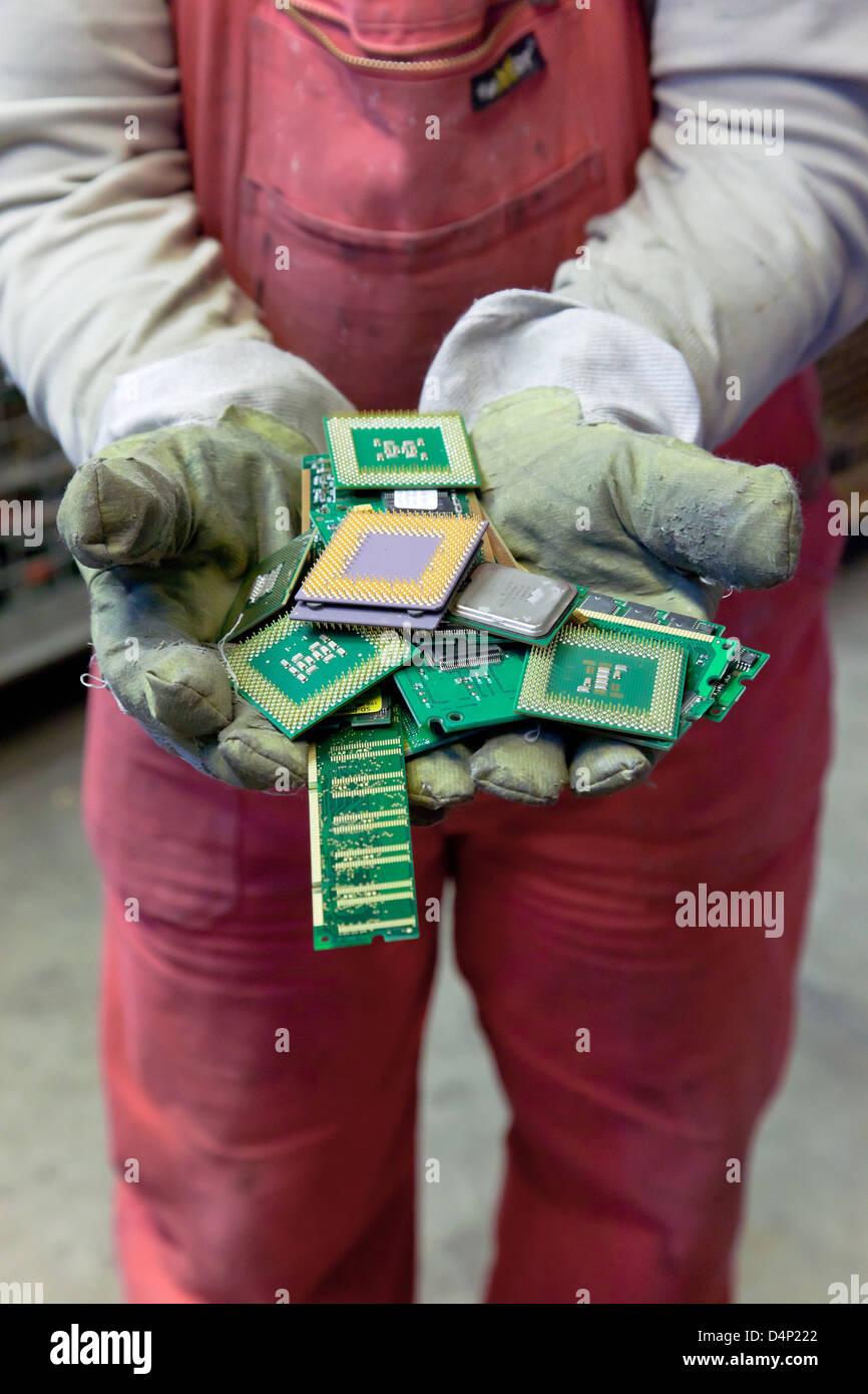 Berlino, Germania, il dipendente detiene BRAL CPU nelle mani Immagini Stock