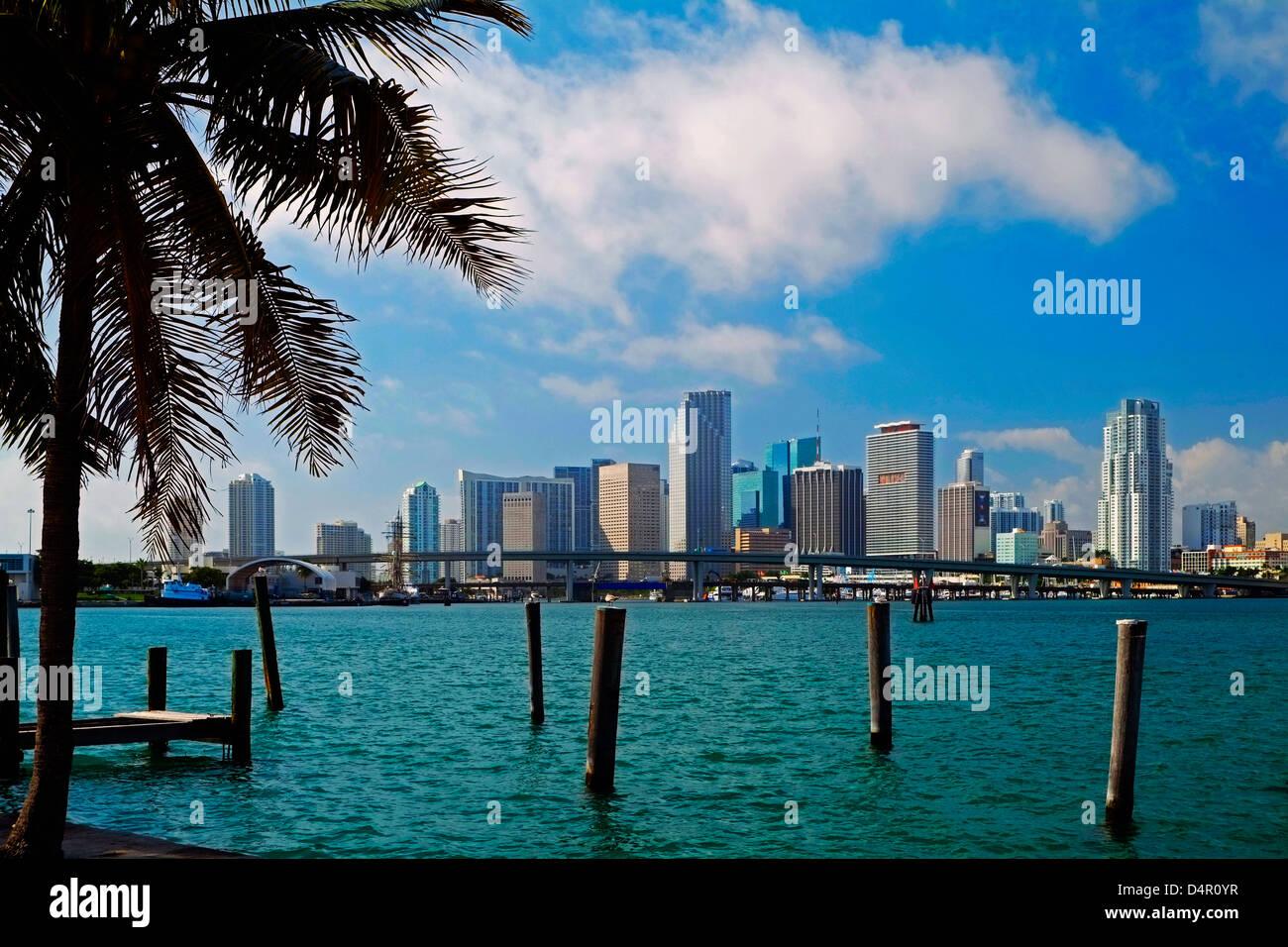 Lo skyline di Miami, Florida Immagini Stock