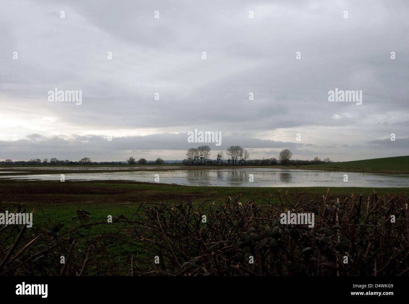 Campo allagato in livelli di Somerset, Inghilterra Immagini Stock