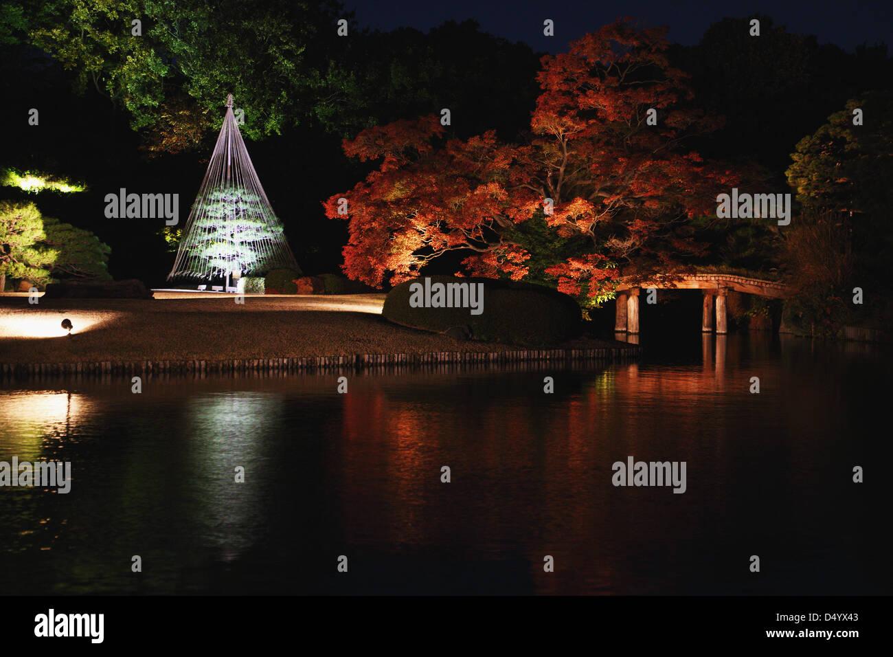 Illuminazione notturna al giardino rikugien tokyo foto immagine