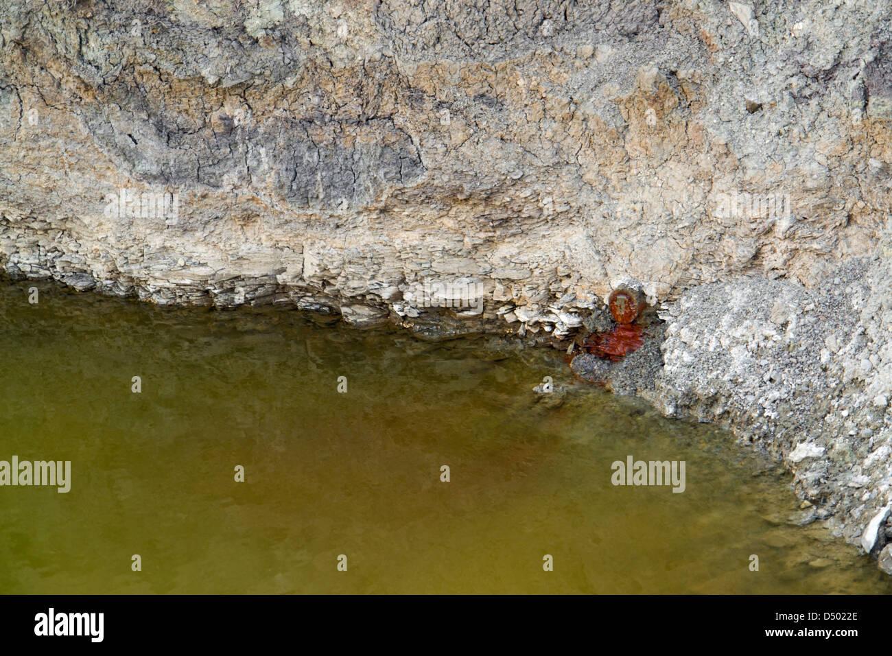 Tema di inquinamento intorno a contaminazione di acqua Immagini Stock