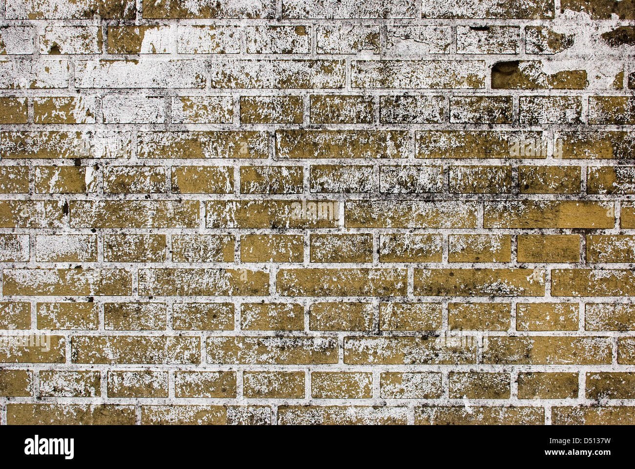 Mattoni Bianchi Per Esterni esterno la parete in mattoni di vernice bianca cosparse foto