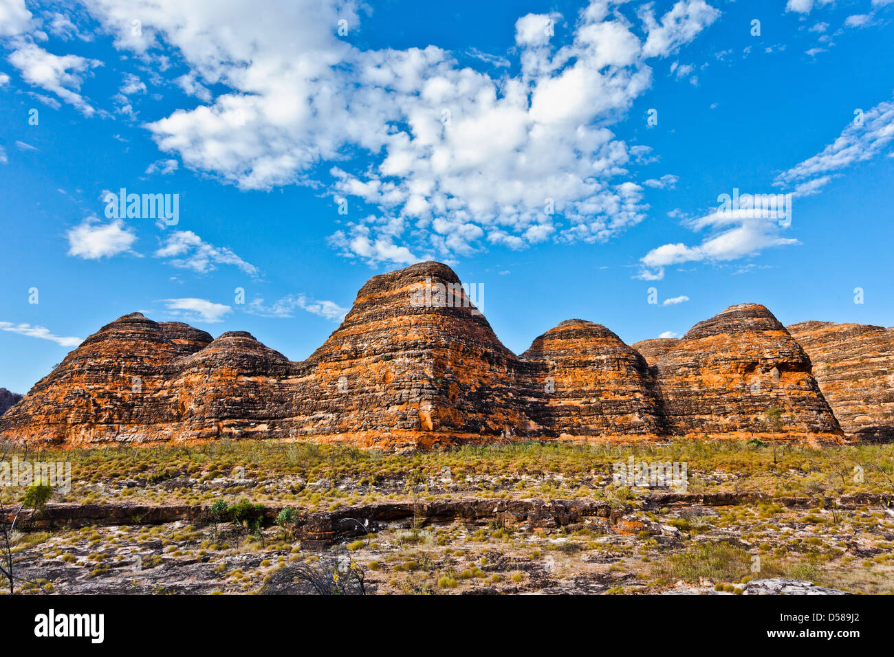 Bungle Bungle Parco Nazionale di Purmululu, vista la caratteristica forma di alveare cupole di arenaria, Australia Immagini Stock